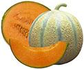 melon-sud